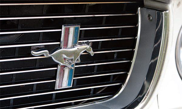 "Sometimes on the production line, stuff just happens. With the fender Mustang emblem used in the grilles being ""handed"" (a different-facing one for each side), it was only a matter of time before the wrong one got used in the grille. This backward horse appeared in the grille of a car still in the possession of its original owner and he confirms that the car came that way from the Shelby dealer. A ""wrong way"" grille horse is also noticeable in one of those ""guy and a girl and a car on the beach"" GT350H promo shots, so there's more proof that it didn't happen just once."