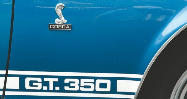 Side stripe geometry was identical to 1966 and 1967 stripes, incorporating familiar Microgramma Extended Bold lettering for both GT350 and GT500 models. One change from 1967, however, was that the designation was now centered on the bottom of the fender (in 1967 it was pushed to the far rear of the front fender). Bright aluminum rocker panel trim had become standard on the fastback Ford Mustang and so was carried over to the 1968 Shelby as well.
