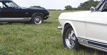 Shelby Mustang History: Revolution, then Evolution
