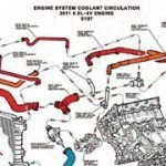 Ford Coyote Engine Cooling System Performance Guide