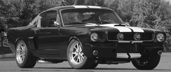 The Shelby side scoops, hood scoop, and R-type front racing apron really blend well with the bulged fenders and stance.